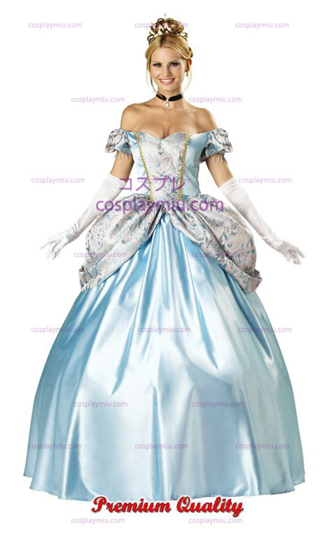Enchanting Princess Costume